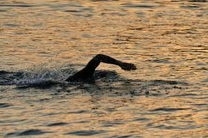 sprint 1 feb swim